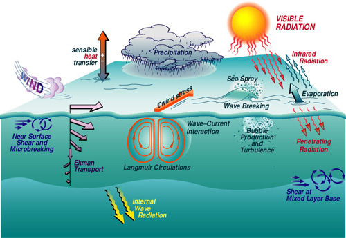 Various forcing functions and physical facters influencing marine    Ocean Ecosystem Diagram